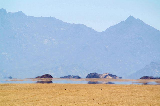 desert-mirage.jpg.638x0_q80_crop-smart