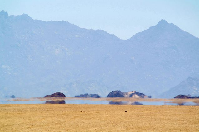 desert-mirage.jpg.638x0_q80_crop-smart